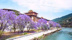 What Is The Best Time To Visit Bhutan